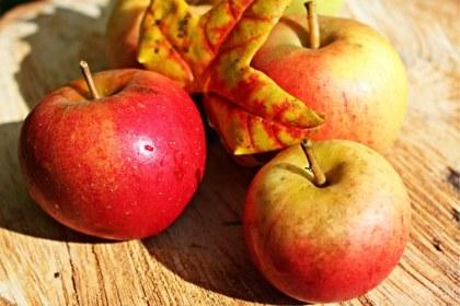 im Herbst gesund bleiben Tipps