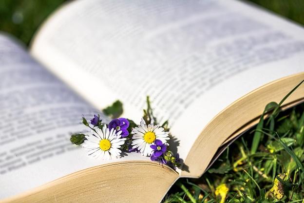 naturheilkunde idee geschichte naturmedizin selbstheilungsprozess