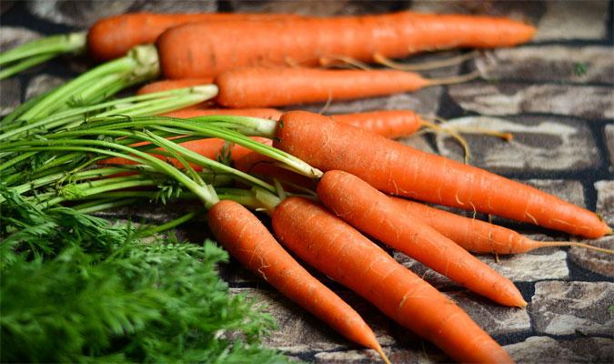 Karotten Lebensmittel mit vielen Vitaminen