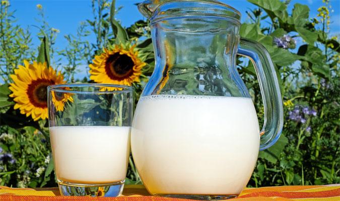 Milch Lebensmittel mit vielen Vitaminen